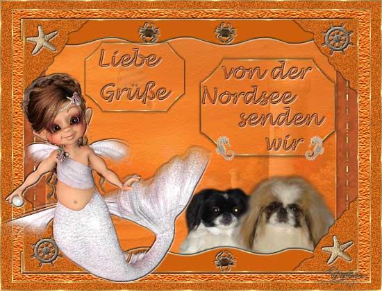 An den Beitrag angehängtes Bild: http://www.vom-drachentor.de/Geschenkbilder/all2011/verregaug.jpg
