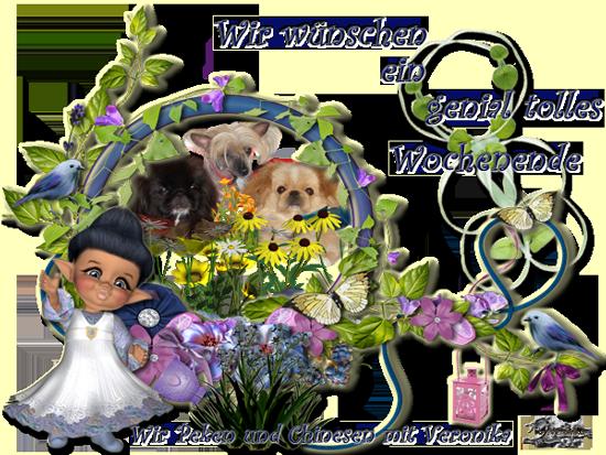 An den Beitrag angehängtes Bild: http://www.vom-drachentor.de/neuba/ma.png